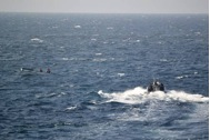 HMNZS TE MANA's boarding team conducts counter-piracy operations; maritime engagement with small boats operating in the region.